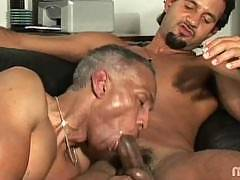 Gay Ebony XXX features gay black men having anal sex with their gigantic gay black cocks.  This gay ebony porn site has both exclusive hardcore gay porn vids and gay porn pics. Gay black porn videos and pictures of gay black men on Gay Ebony XXX.  Watch g